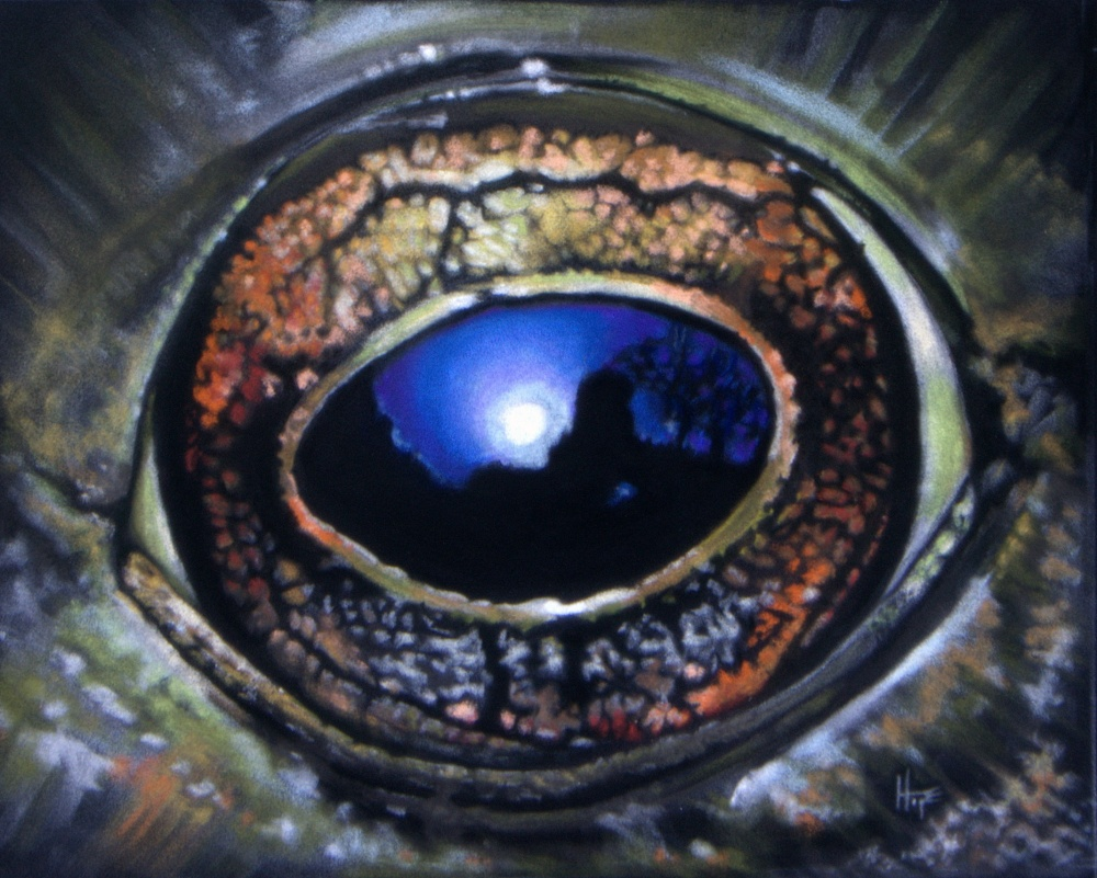 in a frog's eye