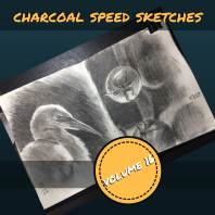 speed sketches IG